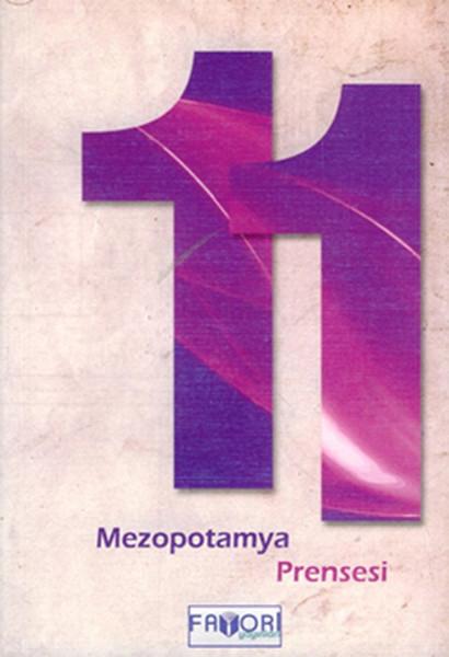 11 kitabı
